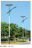 中国の工場からの統合されたMPPTの充電器との太陽公共の照明
