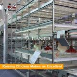 Heiße galvanisierte automatische BratrostBatterien für Verkauf