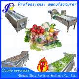 동결된 야채를 위한 자동적인 거품 세탁기
