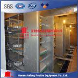 H de Batterijkooien van de Kip van de Laag van het Type Voor de Apparatuur van het Gevogelte