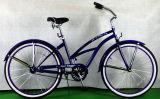 여가 강철 단 하나 속도 바닷가 함 자전거