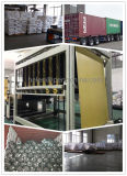 Membrana impermeabile Membrane/PVC del PVC del traforo impermeabile dello scantinato