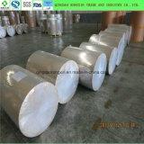 Nuevo material biodegradable de la taza de papel