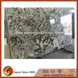 Giallo importado Antico Granite Slab para Kitchen Countertop/Vanity Top