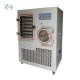 Novo design do secador a vácuo das frutas
