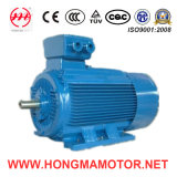 Hm Series Basso-Voltage Gran-Power Electric Motor con Frame Size: 400