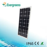 Réverbères solaires de la vente chaude DEL, réverbère de 60 watts DEL