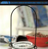 De Vaas van de Installatie van de Bloem van het Glas van de pompoen met Gemakkelijke Hangende Houder