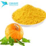 Poudre de citrouille extrait de légumes frais