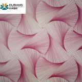 Reticolo principale materiale PPGI di qualità della decorazione