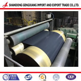 Prepainted o el color de la bobina de acero recubierto de PPGI PPGL o de acero galvanizado recubierto de color