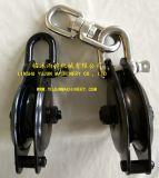 Bloco de equipamento com a porca do olho do giro e o grilhão de D