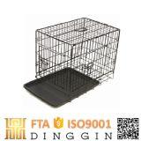 2 Doors를 가진 높은 Quality Steel Dog Cages