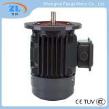 Motor assíncrono trifásico da eficiência elevada da série de Ye2-80m1-2/4/6 Ye2