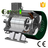 generatore magnetico di 5kw 900rpm, generatore magnetico permanente di CA di 3 fasi, uso dell'acqua del vento con il RPM basso