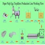 Más grande o pequeña capacidad pulpa de papel Bandeja de huevos de la máquina de moldeo