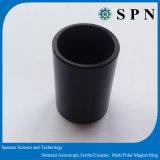 De sterke Magneet van de Ring NdFeB sinterde Veelpolige Magneet voor Motor BLDC
