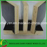 la madera contrachapada de la cara de la película de la base de la madera dura de 18m m con dos veces presionó