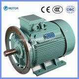 広く利用された高品質3段階の非同期電動機