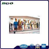 인쇄 물자 PVC 자동 접착 비닐 Windows 필름 (100mic 120g relase 종이)