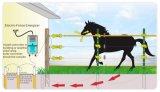 Frontière de sécurité de clôture électrique de moutons d'isolant de pp/frontière de sécurité de bétail/frontière de sécurité de ranch pour le bétail