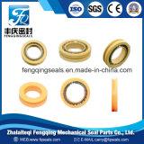 Selos energizados de PTFE mola de bronze hidráulica para o cilindro