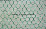 Maglia esagonale rivestita della rete metallica del PVC