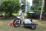 3 Rad-einfacher Mitfahrer-Stadt-Elektromotor-Roller Es5013 mit Kind-Sitzroller auf Verkauf