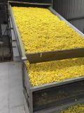 Asciugatrice dell'essiccatore della frutta commerciale di verdure della macchina