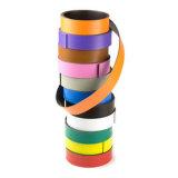 Magnete di gomma flessibile variopinto di alta qualità