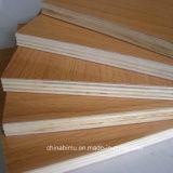Prix bon marché de la Chine le fournisseur d'Eucalyptus Bintangor de contreplaqué de base
