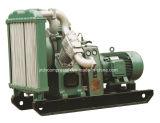 Compresor de aire industrial del pistón con el SGS