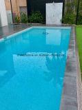 AntislipTegel van het Graniet van de aard de Grijze voor de Bank van het Zwembad