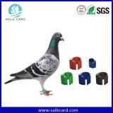 Vogel-Ring-Marke UHFRFID für Vogel Identifikation, die Management-System aufspürt
