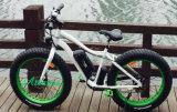 سمين إطار العجلة وسط ثلج جبل ساعد درّاجة كهربائيّة مع دوّاسة