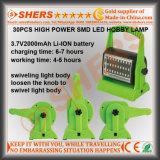 Lumière sans fil rechargeable de passe-temps de 30 SMD DEL