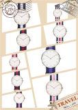Wristwatch планки нового сбывания OEM типа Dw способа горячего Nylon (DC-839)