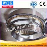 Rolamento Wqk29/600Nup m do rolamento de roletes cilíndricos Rolamento laminadores