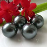 Перламутр Shell Pearl валики круглой, овальной формы в белый, черный, коричневый, золотистого цвета от 4мм-20мм