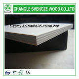 Decoration를 위한 18mm High Quality Melamine Commercial Plywood Used