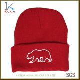 Casquillo hecho punto sombrero bordado aduana del invierno de la gorrita tejida del bebé