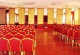 Geluiddichte Glijdende Muren Parititon voor Restaurant en Hotel