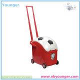 Réfrigérateur de forme du football mini
