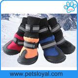 O inverno do fabricante ventila sapatas do cão de animal de estimação do luxo TPR grandes