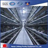 Cage de poulet Jaulas Pollos cages de la volaille de la couche de la batterie