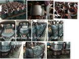 Bombas de água submergíveis elétricas 220V/380V de Qdx10-10-0.55f Dayuan, 0.55kw