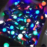 크리스마스 훈장을%s IP65 LED 벨트 빛