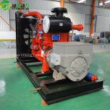 Generador del biogás del valor 200kw de la potencia con de alto rendimiento