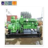 CNG, GPL, Syngas/gas naturale/biomassa/generatore del biogas con il motore a combustione interna