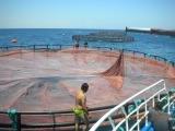 En PEHD moderne de haute qualité en mer profonde filet de pêche de la cage de châssis